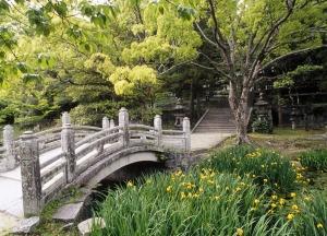 Hagi_Castle_Garden,_Western_Honshu,_+Japan